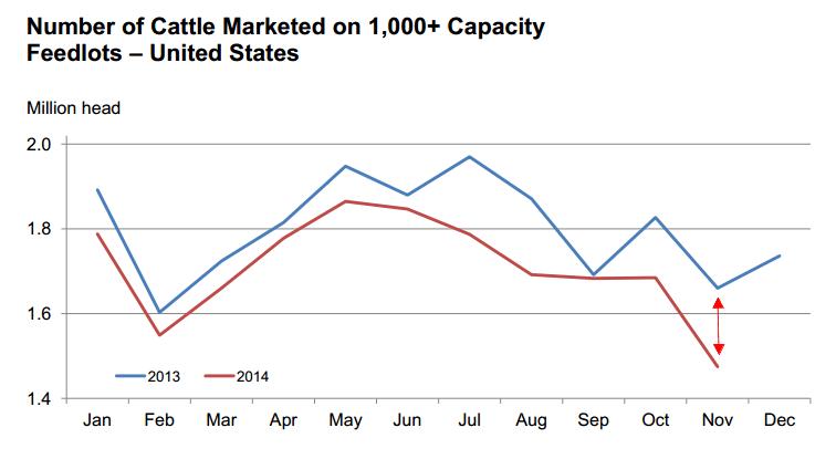cattle marketed november 2014