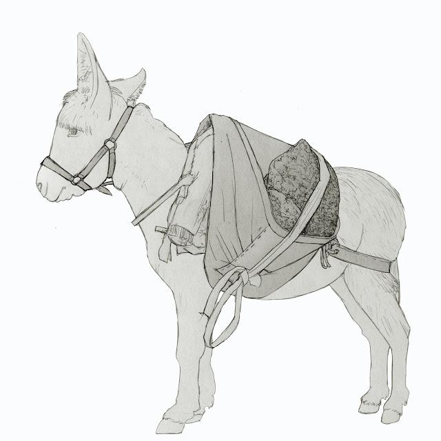 burro con seron, aljez, animales de carga
