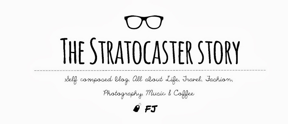 The Stratocaster Story