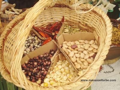 Ingredientes tradicionales de la Cocina Mexicana