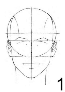how to draw a female face front view