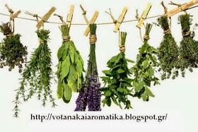 ΒΟΤΑΝΟ-ΛΟΓΙΚΑ (Βότανα,αρωματικά, φυτικά, βιολογικά, βοτανοθεραπεία)