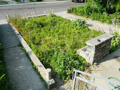 Bloordale garden clean up Paul Jung Gardening Services Toronto before