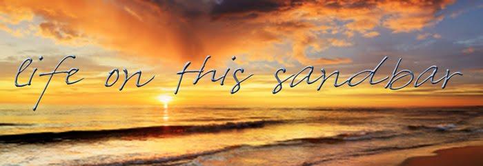 This Life on a Sandbar