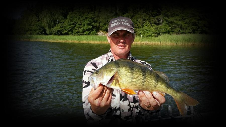 Robert Andens fiskeblogg