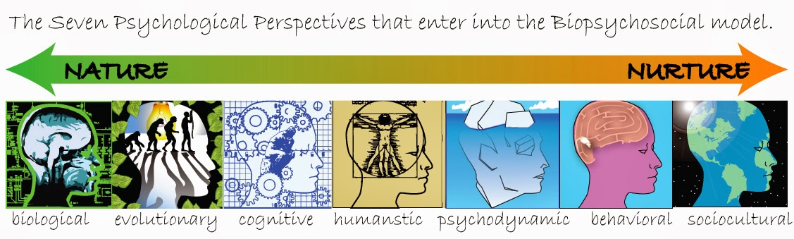 how is anxiety disorders viewed by various psychological perspectives such as psychodynamic biologic The psychodynamic perspective is the study of psychological forces that underline human behaviour such as feelings, emotions and how they might relate to human experiences sigmund freud and eric erikson are both psycho-dynamic psychologists.