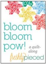 Bloom Bloom Pow! QAL