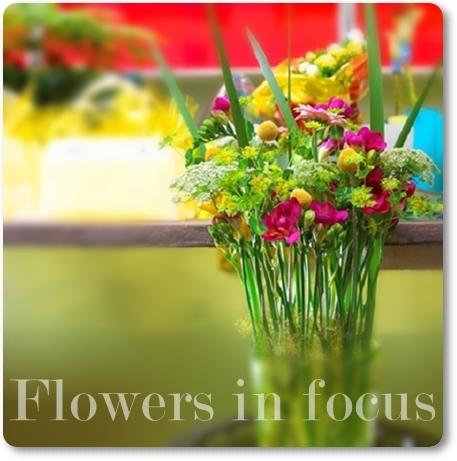 blommor fokus