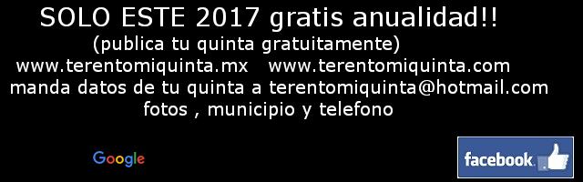 terentomiquinta.mx  #1 en quintas