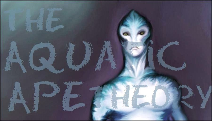 the aquatic ape theory The latest tweets from aquatic ape theory (@aquaticapetheor)  \phillyape philadelphia.