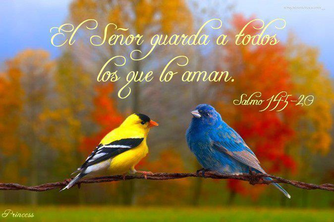www tarjetas cristianas com: