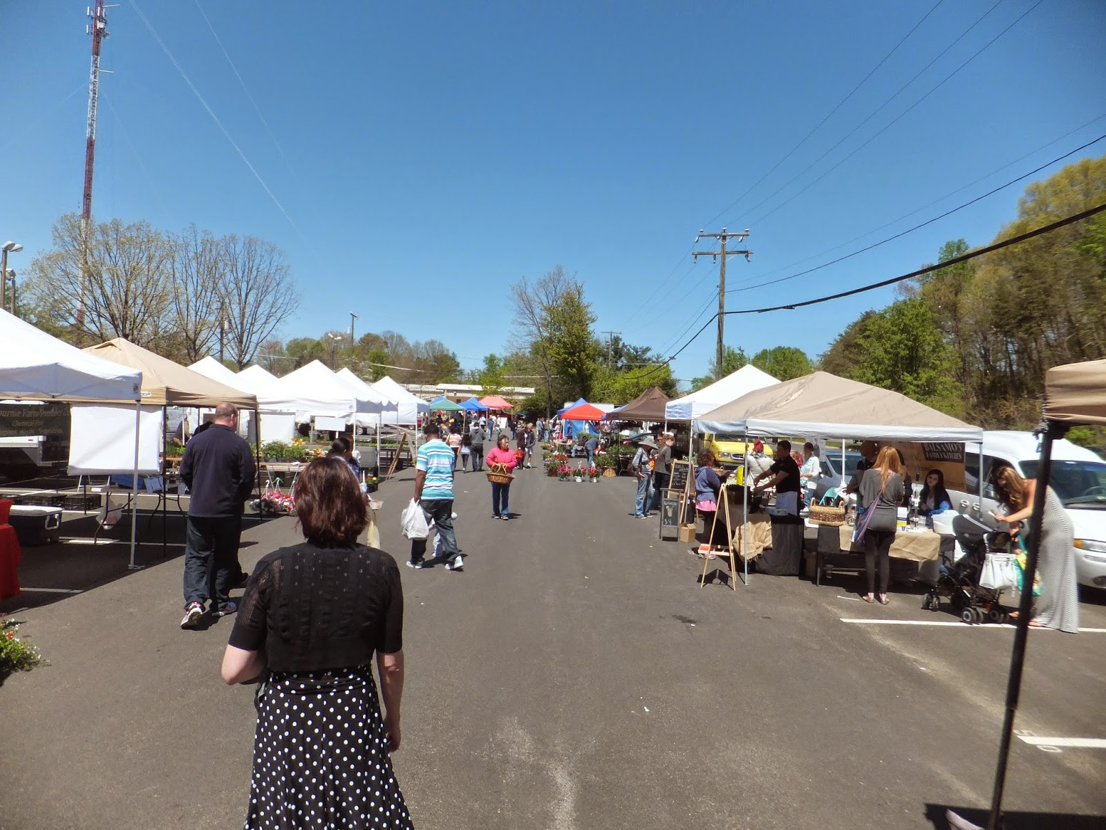 Terra Garden Milton Farmers Market Garden Ftempo