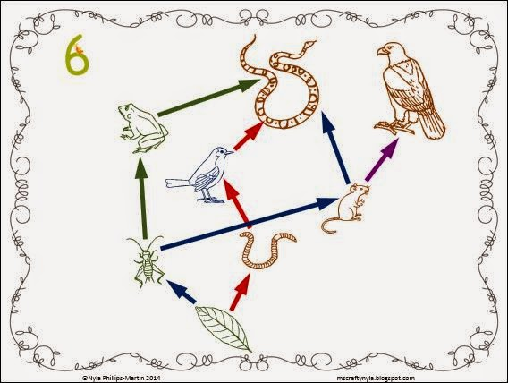 Food-web-poster-example