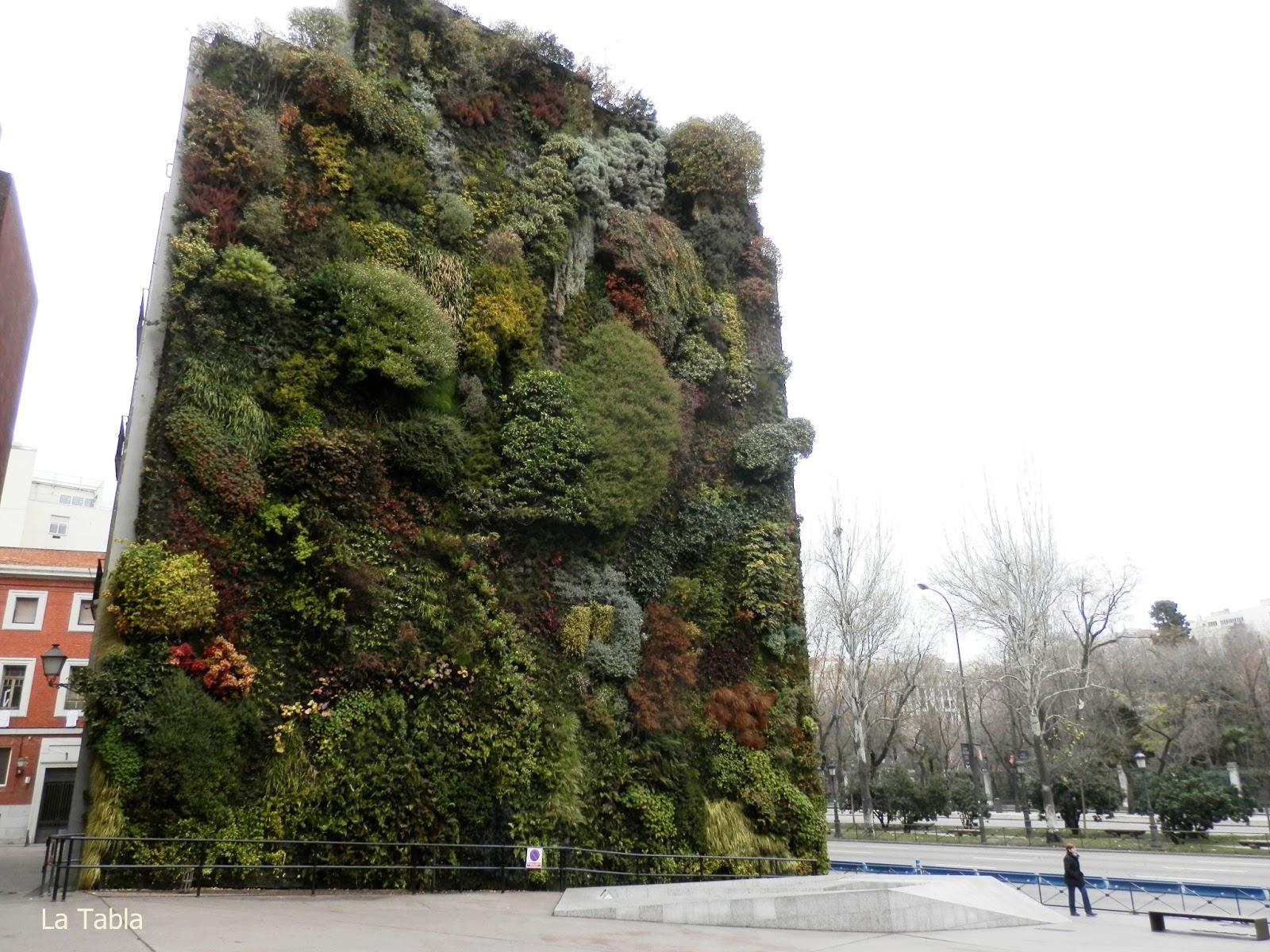 Jard n vertical caixa forum en diciembre 2012 for Jardin vertical caixaforum madrid