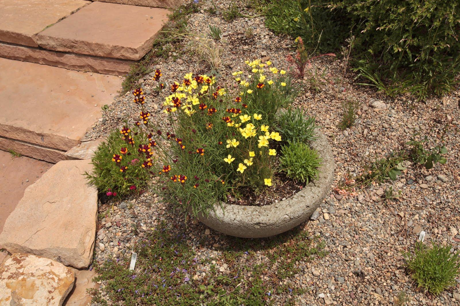 Colorado Day 8 - Betty Ford Rock Garden