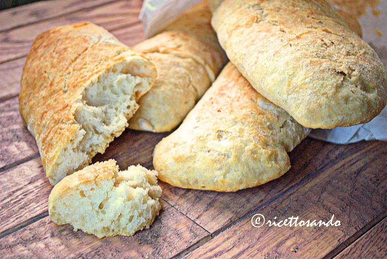 Pane senza impasto le stecche di Jim Lahey con pasta madre