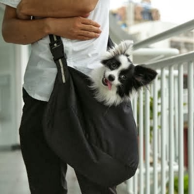 ATC Fashion Sling Tote Pet Dogs Cats Carrier Single Shoulder Bag