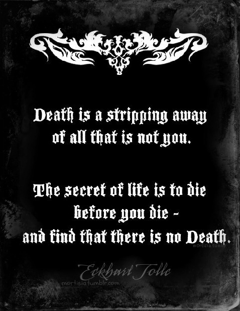 Life and Death Quotes  waywardpencils