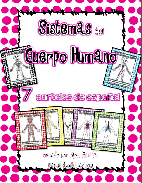 Body System Posters Human Body System Posters