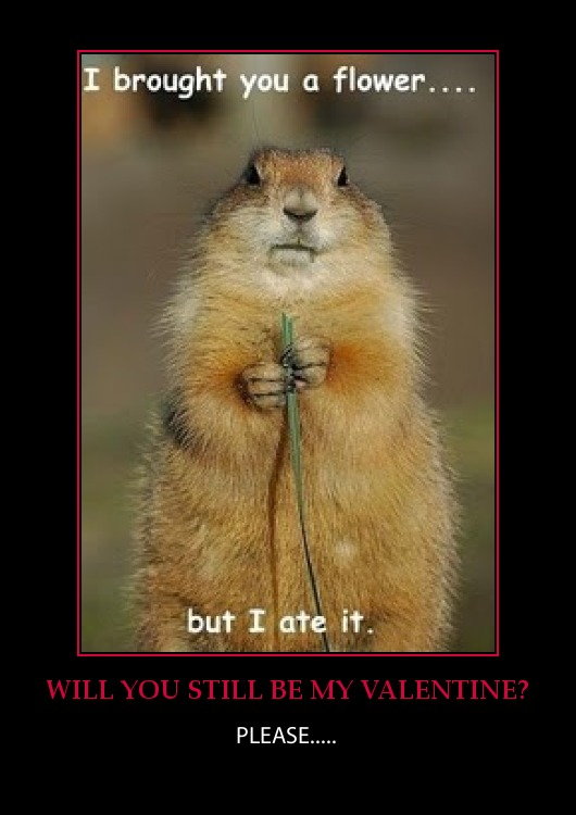 valentine senior moment - Valentine Jokes Funny