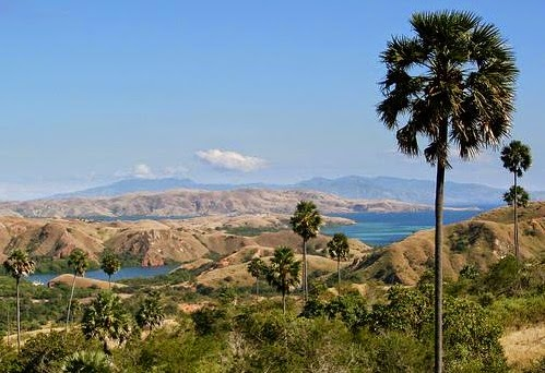 Komodo Island, East Nusa Tenggara