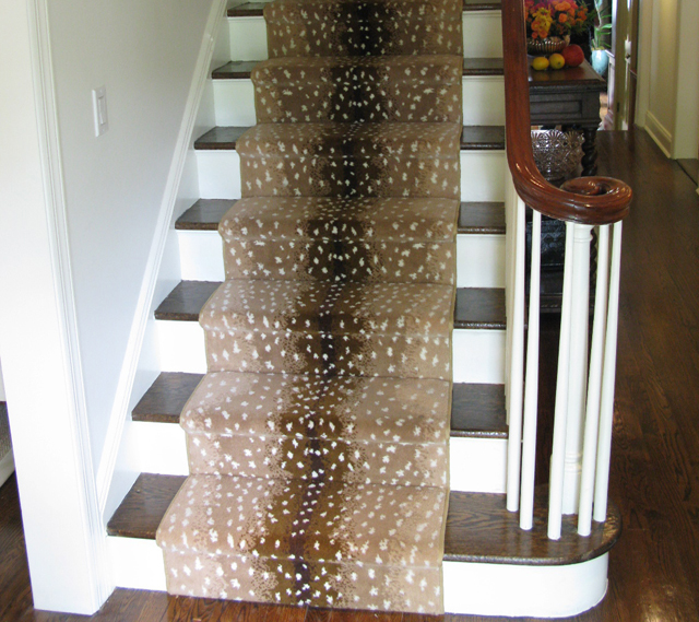 Fawn On Pinterest Carpets Carpet Colors And Deer