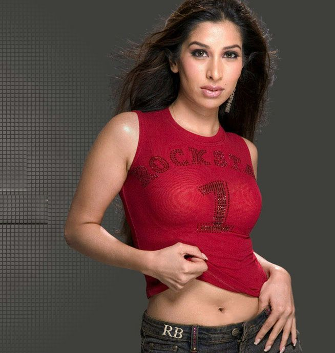 Latest Navel Cute Spicy Picture of Sophie Chaudhary Gallery Navel