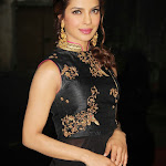 Priyanka Chopra latest wallpapers in black dress