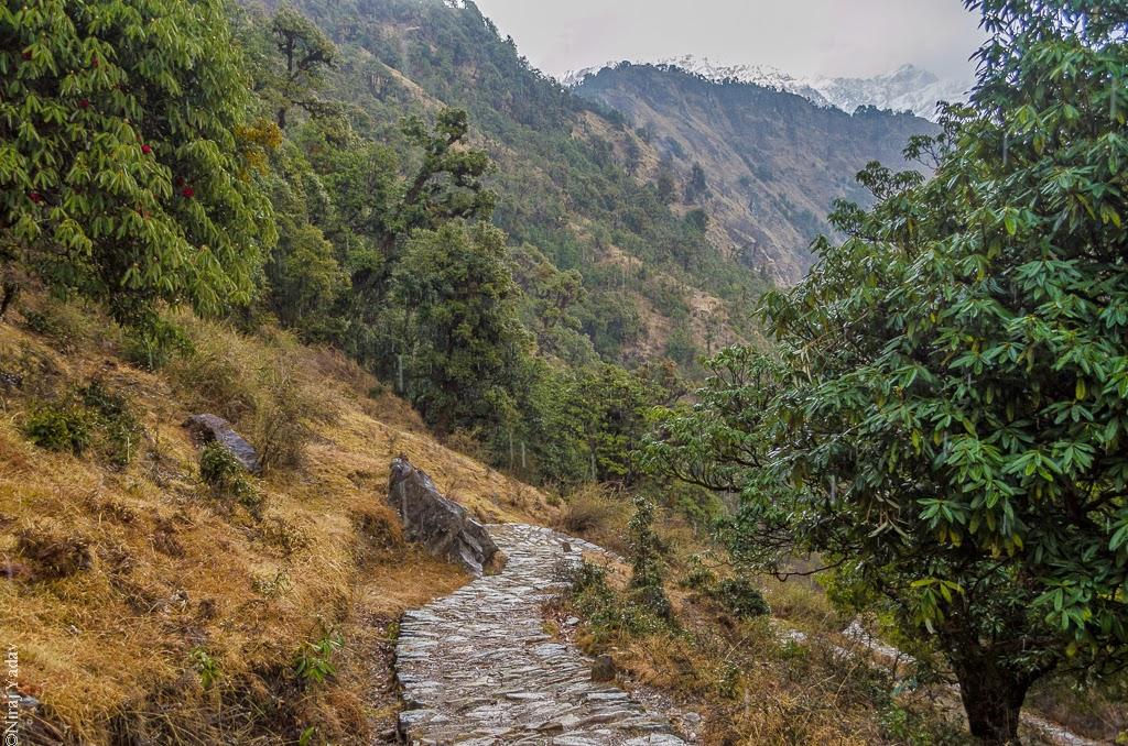 deoria tal trail path, budgetyatri