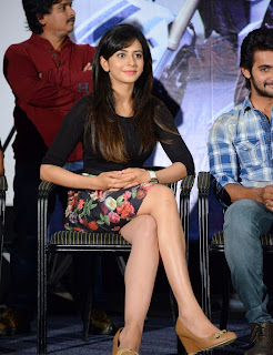 Actress Rakul Preet Singh Pictures in Floral Short Skirt at Rough Teaser Launch  44.jpg