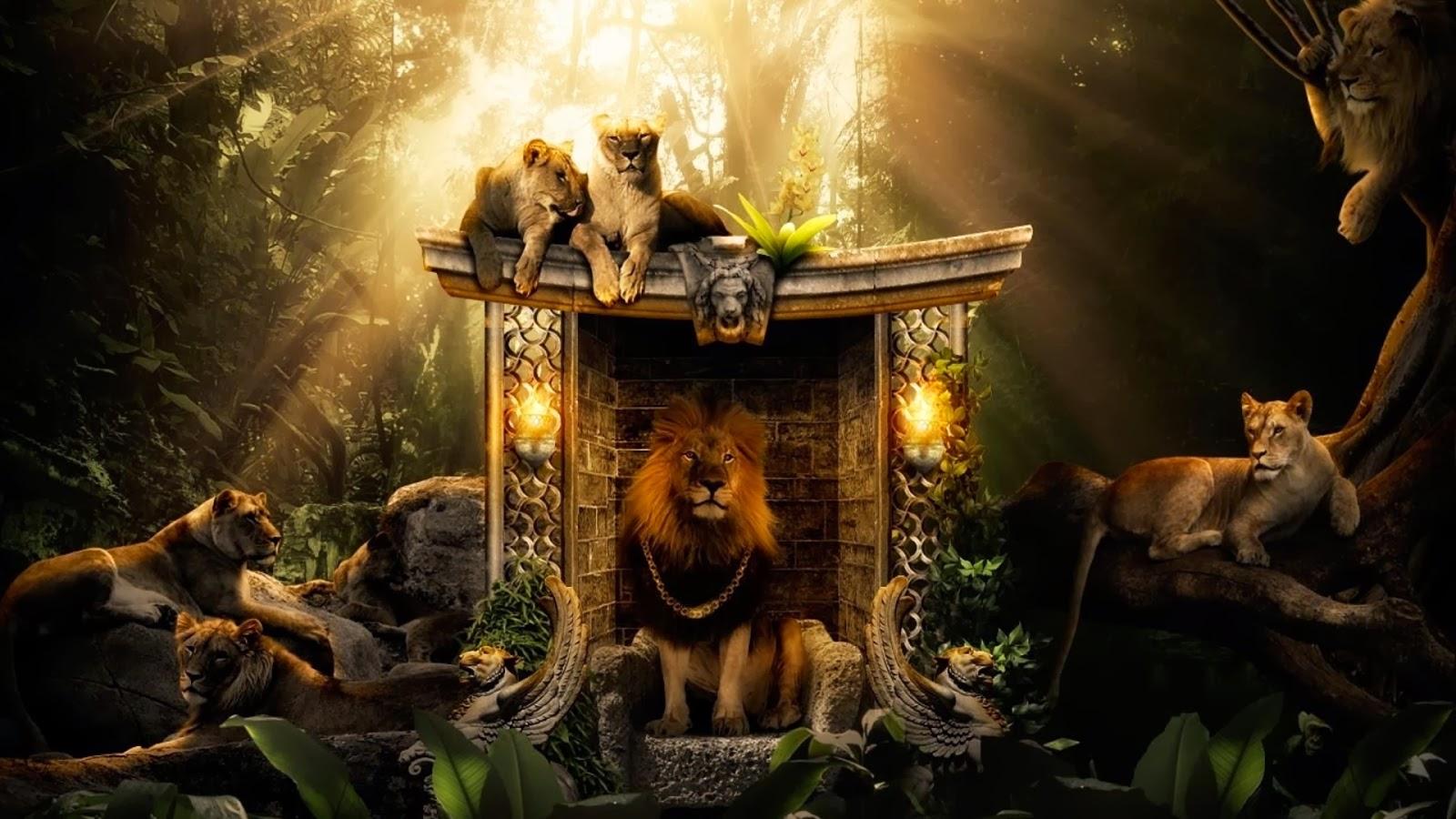 Jungle Lions