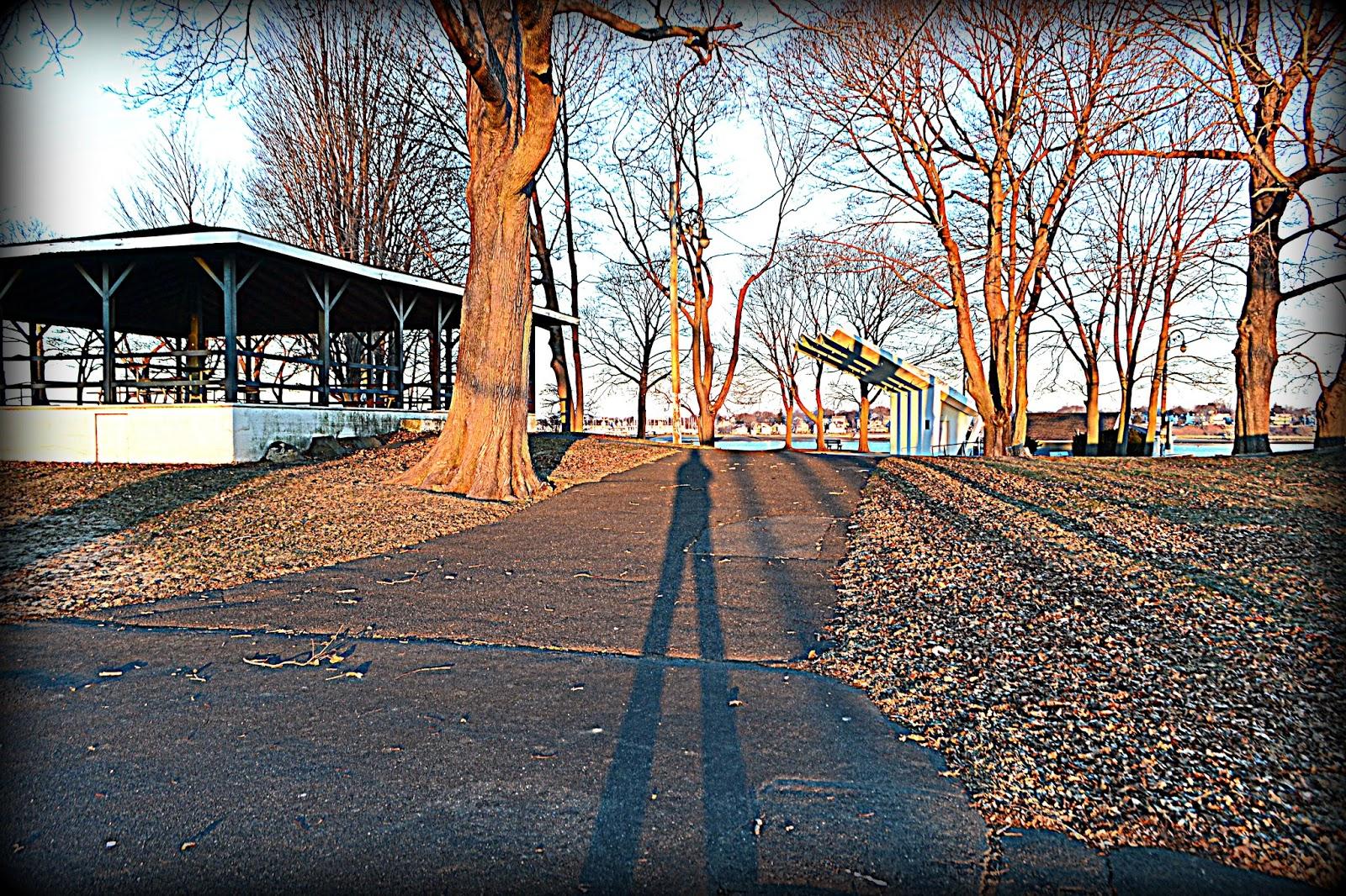 Salem WIllows, Massachusetts, Morning Shadows, hdr
