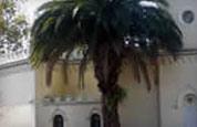 Edificios públicos e históricos del barrio de mi escuela