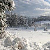 18 fotografías de invierno - Escenarios naturales con lagos, ríos, árboles y montañas cubiertas de nieve. - Winter free photos