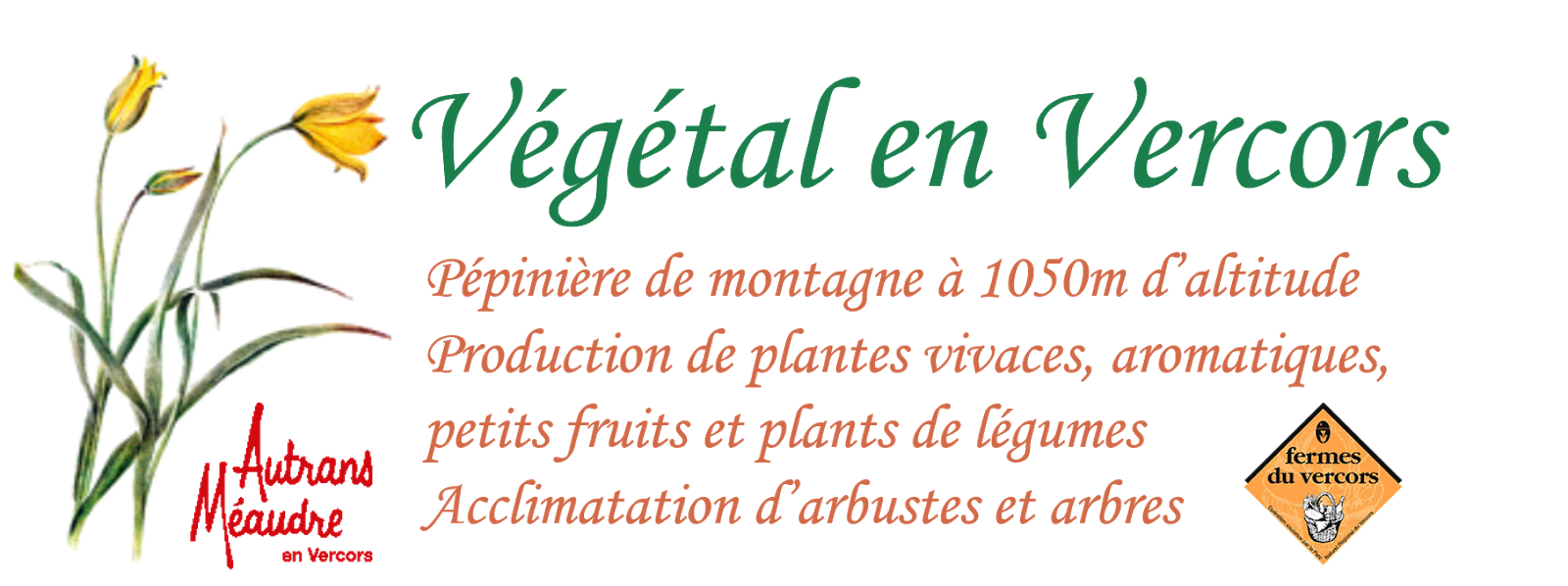 Végétal en Vercors