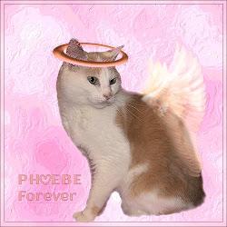 RIP PHOEBE
