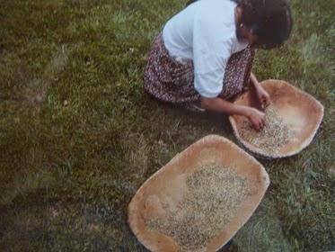 """Tách gạo: Điều này cho thấy rằng gạo đã được phổ biến trong thời gian cực kỳ cổ xưa (From: """"Hướng dẫn của Traveler Mỹ"""")."""