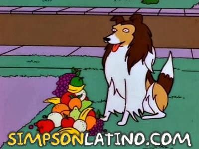 Los Simpson 8x20