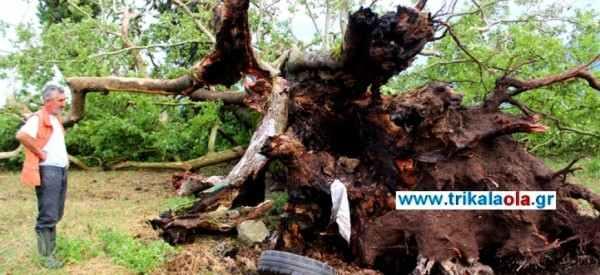 ΒΙΝΤΕΟ-Στο μάτι του κυκλώνα τα Τρίκαλα-απίστευτες εικόνες που τρομάζουν…