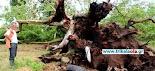 Απίστευτη και πρωτοφανής κακοκαιρία χτύπησε χθες περιοχές του Νομού Τρικάλων.  Όπως περιγράφουν οι φίλοι αναγνώστες στο trikalaola.gr αυτό...