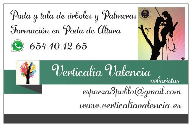 Poda valencia contacto - Empresas jardineria valencia ...