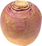 Deadly turnip