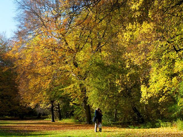 Love is in the air, Tiergarten