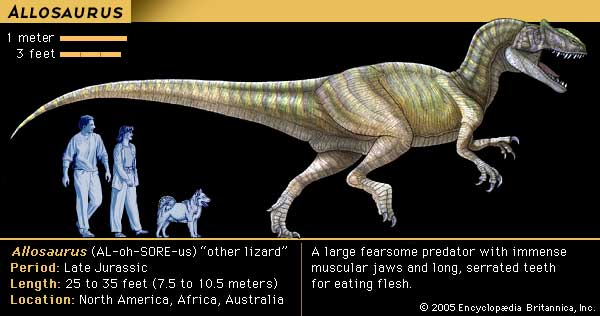 Radiocarbon dating dinosaur fossils games