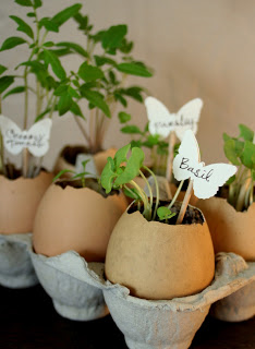 tutorial on making egg shell planters