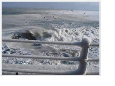 sea freezes