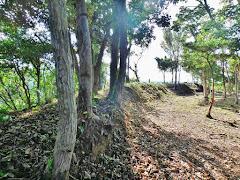 大崎城(鳥取県鳥取市小沢見)