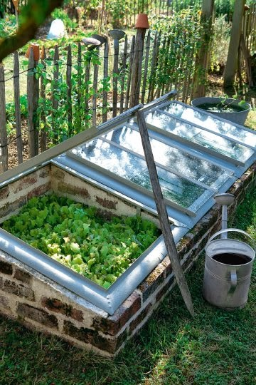 Greenhouse from recycled windows #Gardening