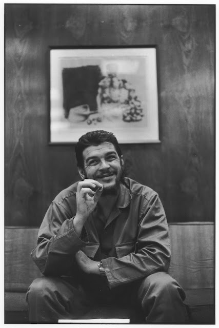 Ernesto Che Guevara Seen On www.coolpicturegallery.us
