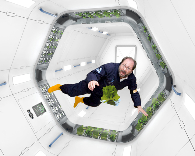 Astronautas poderão comer verduras frescas no espaço